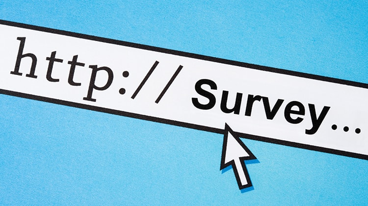 How To Make Money With Surveys Online