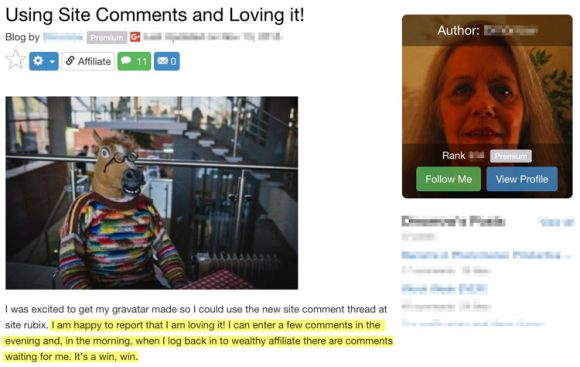 Wealthy Affiliate Site Comments Testimonial 1