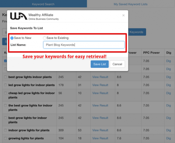 Wealthy Affiliate Keyword Tool Example - Part 3